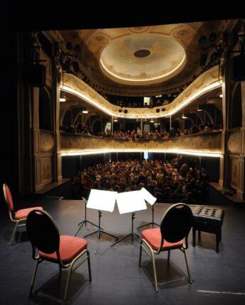 Spectacle au theatre de Vienne