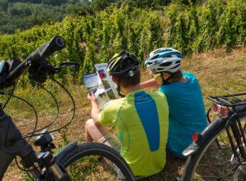 Couple à vélo dans les vignes
